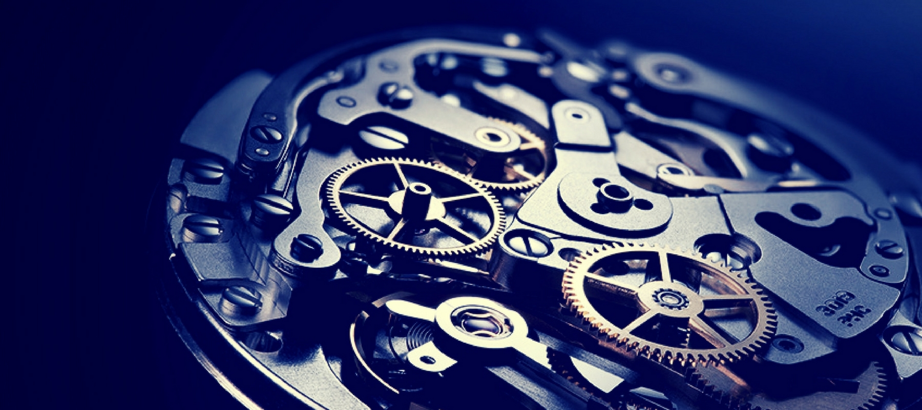chronohaus-luxury-watches-subscription-homepage